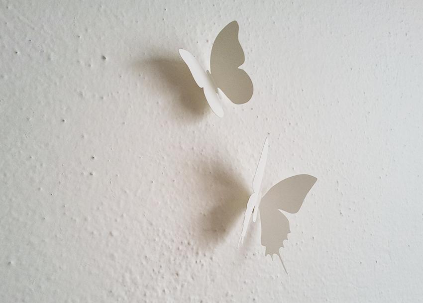 3D motýli na zeď
